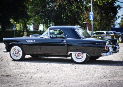 Carosseria-Classica_Ford Thunderbird 1955-7403