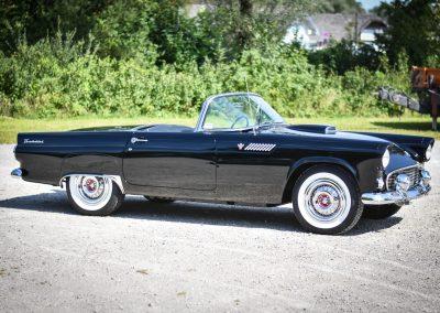 Carosseria-Classica_Ford Thunderbird 1955-7458