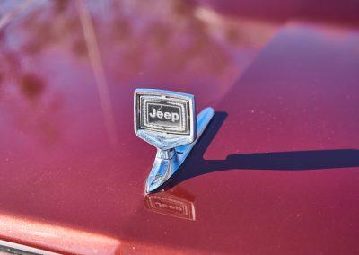 JeepWagoneer15209